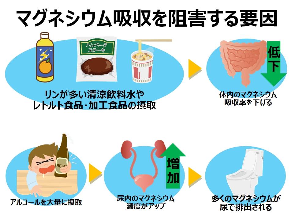 マグネシウム吸収を阻害する要因