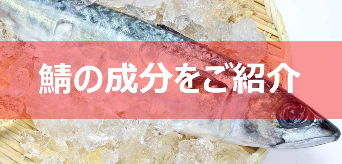 鯖の成分見出し