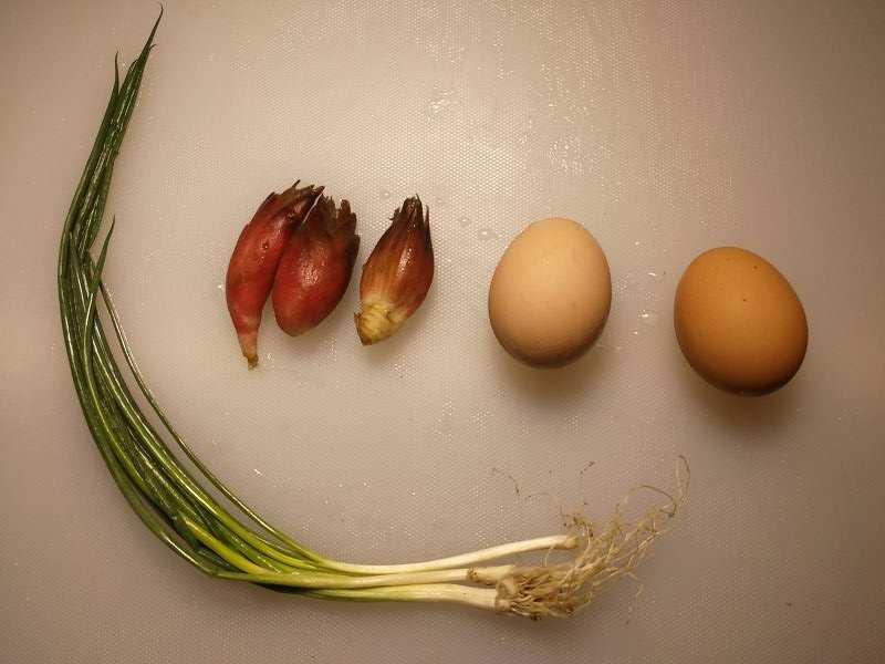 ミョウガの卵とじの食材一覧